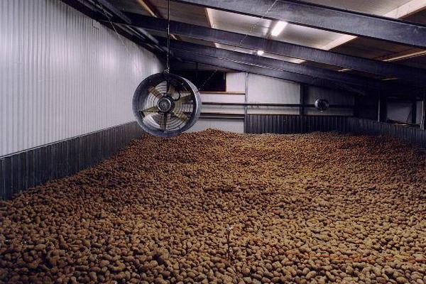 """Современное картофелехранилище Волгоград строит по проекту нашей компании """"Металлтрейд"""" построит элеватор, зернохранилище и овощ"""